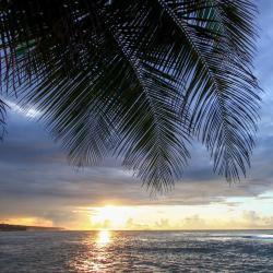 Ceiba 11 hotels