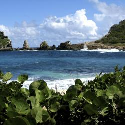 Basse-Terre 3 homestays
