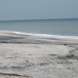 Nueva Gorgona 7 vacation rentals