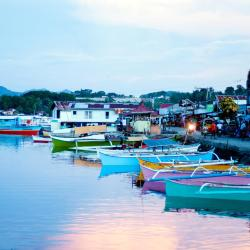 Surigao 5 beach hotels
