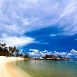 Tanjungpandan 60 hotels