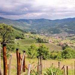 Borgo Val di Taro 16 hotel