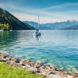 Steinbach am Attersee 3 pet-friendly hotels