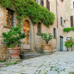 Castellina in Chianti 169 hotell