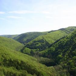 Saint-Maurice-sur-Moselle 3 cabins