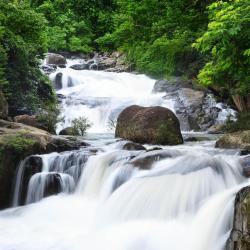 Nakhon Nayok 16 resorts