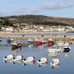 Lyme Regis 168 hotels