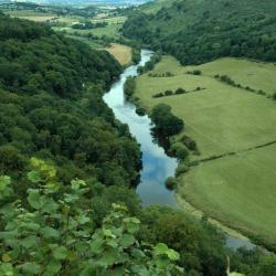 Symonds Yat 14 hotels