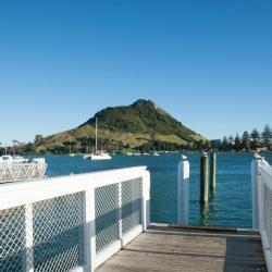 Mount Maunganui 67 hotelli