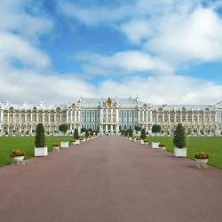 Pushkin 175 hotéis