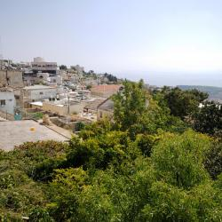 Safed 55 vacation rentals