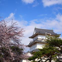 Aizuwakamatsu 23 hotels