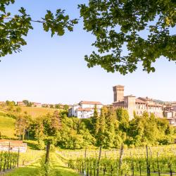 Кастельветро-ди-Модена 15 отелей