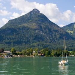 Strobl 24 pet-friendly hotels