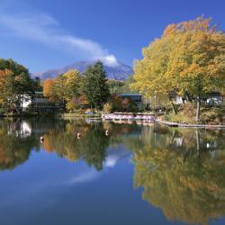 Naganohara 5 hotelov