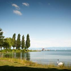 Immenstaad am Bodensee 4 homestays