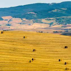 San Casciano dei Bagni 4 farm stays
