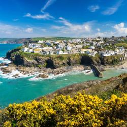 Port Isaac 41 pet-friendly hotels