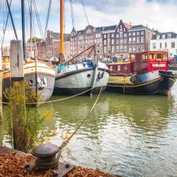 Dordrecht 9 hoteles que admiten mascotas