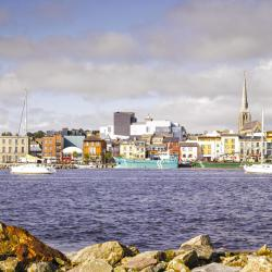 Wexford 11 homestays