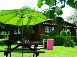 Cabanas la Chicharra, camping resort en Xico