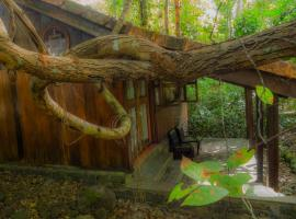 Forest Floor Lodges