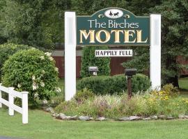 Birches Motel, family hotel in Saratoga Springs