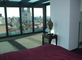 Upper Town apartment Radiceva