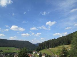 Schöne Ferienwohnung in Baiersbronn