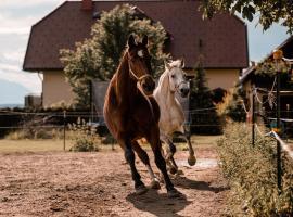 Urlaub für Mensch und Tier - Appartements Pirkhof