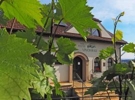 Hotel Vinohrad