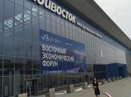 Visti Stay in Vladivostok Airoport