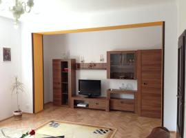 Lovely Central Apartment Sibiu