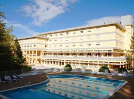 vivendas Alves Pinho, hotel in Santa Maria Da Feira