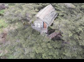 Island Vision Tree Lodge