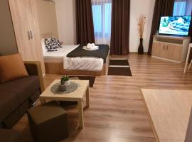 Villa ALLA Fundeni Apartments
