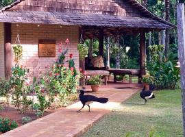 ATTA Rainforest Lodge