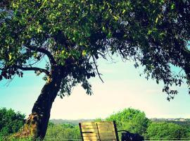 Campamento Turístico Brandoñas