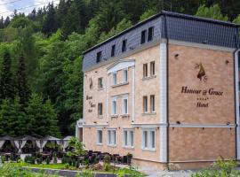 Honour and Grace Hotel, hotel in Jáchymov