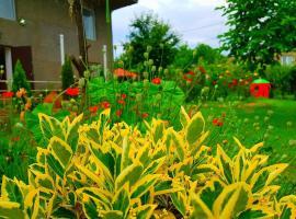 Ameli Garden
