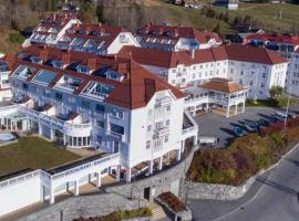 Private Apartment Dr Holms hotel, hotel in Geilo