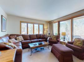 Ski Run Condominiums 401