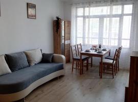 Апартамент Арина