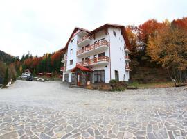 Hotel Paltinis
