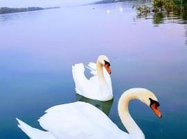 Dunav Hedonic