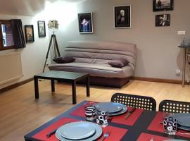 Ciné Loft 55 m2 Centre Ville
