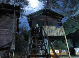 Olympos Woods, место для глэмпинга в Олимпосе