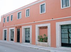 Hotel Casa Pellegrin