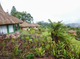 New Guinea Natural Tours