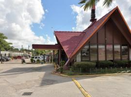 Red Carpet Inn, B&B in Houston